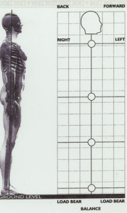 Exercise Performance/Postural Enhancement